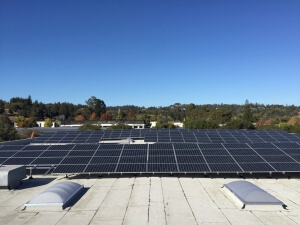 Geo H. Wilson Inc. has a roof mainly covered in solar panels